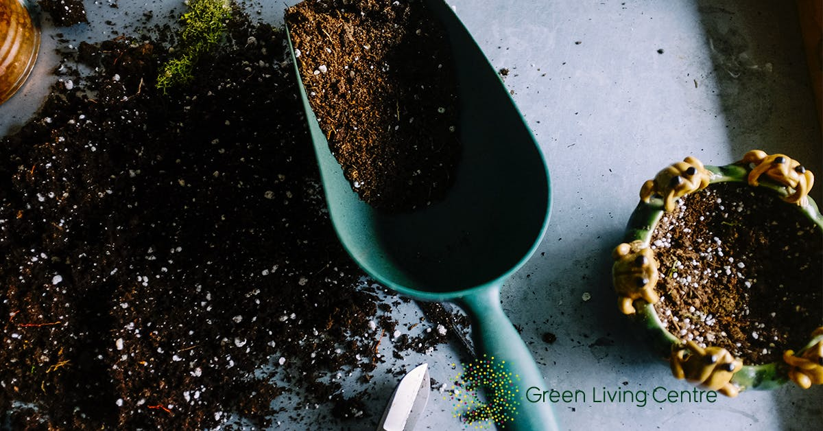 Soil and hand trowel